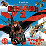 Dragon Race! (How to Train Your Dragon 2)