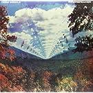 Innerspeaker [Vinyl]