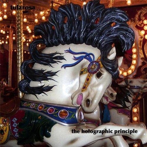 Holographic Principle