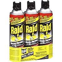 Raid Wasp & Hornet Spray 17.5 Oz - P...
