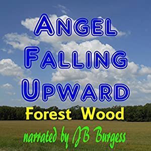 Angel Falling Upward Audiobook