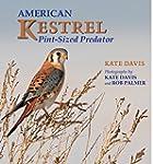 American Kestrel: Pint-Sized Predator
