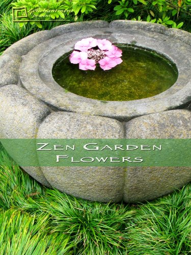 Zen Garden Flowers – Meditation & Relaxation Digital Download