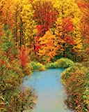 Autumn Reflection Jigsaw Puzzle
