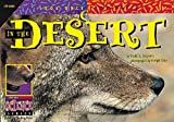 img - for In the Desert (Look Once, Look Again) book / textbook / text book