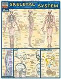 Skeletal System (Quickstudy: Academic)