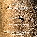 Der Hochwald | Adalbert Stifter