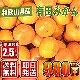 和歌山県産【有田みかん】約2.5kg/紀州/訳あり