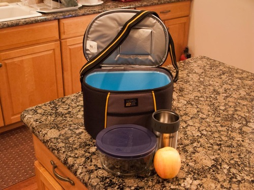 Thermos Element 5 Cooler ~ Amazon thermos can element cooler lunch boxes
