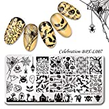 Summer Fruit Nail Art Stamping Template Tropical Punch Pattern Rectangle Image Plate Stamping Polish Needed BPX-L007 (Color: BPX-L007)