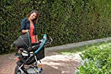 Graco-Click-Connect-Literider-Stroller-Finch