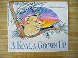 A koala grows up (0590305638) by Gelman, Rita Golden