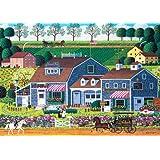 Buffalo Games Charles Wysocki: Prairie Wind Flowers - 300 Piece Jigsaw Puzzle by Buffalo Games
