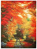 Candamar Designs Autumn in New England by Charles Counted Cross Stitch Kit, White