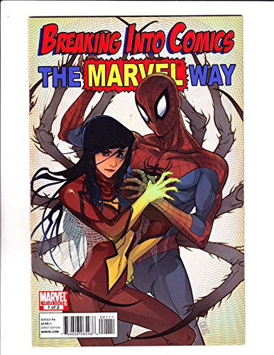 breaking-into-comics-the-marvel-way-no1-amp-2-set-2010-limited-2-book-set-