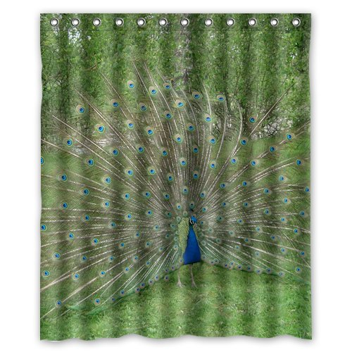 peacock feature green trees grass wallpaper Shower Curtain 60 x 72 Inch Bathroom