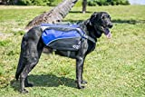 2PET Quick Release Adjustable Saddlebags Dog Backpack Style Dog Accessory for Large Dogs 14 inches long Bonny Blue, Ideal for day trips, hiking, trekking