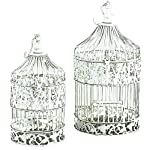 Deco 79 88016 2-Piece Metal Square Bird Cage Set