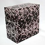 RATTLESNAKE BOX-The MODS Tracks in Epic Years-(DVD付)