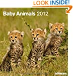 2012 Baby Animals Wall Calendar