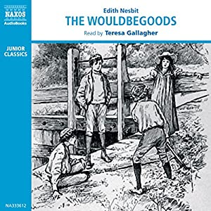 The Wouldbegoods Audiobook