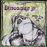 Dinosaur Jr. You're Living All Over Me [VINYL]