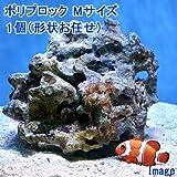 (海水魚)ライブロック ポリプロック Mサイズ(1個)(形状お任せ) 本州・四国限定[生体]