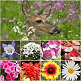 Bulk Package of 30,000 Seeds, Deer Resistant Wildflower Mixture (100% Pure Live Seed) Non-GMO Seeds by Seed Needs ...