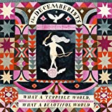 Buy The Decemberists - What A Terrible World, What A Beautiful World New or Used via Amazon