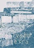 img - for Allyson Vieira: The Plural Present (Si) book / textbook / text book