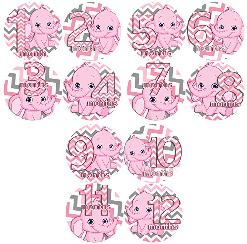 PINK GIRL CHEVRON ELEPHANTS Baby Month By Month Stickers - Baby Month Onesie Stickers Baby Shower Gift Photo Shower Stickers