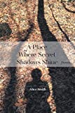 img - for A Place Where Secret Shadows Shine book / textbook / text book