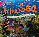 Becca Heddle Collins Big Cat - In the Sea: Band 01B/Pink B