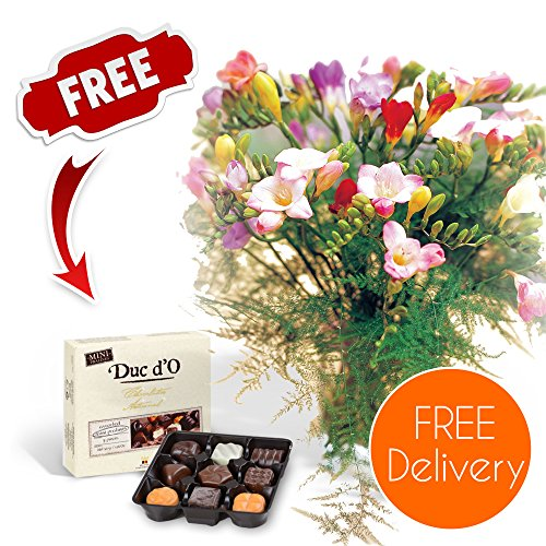 fresh-flowers-delivered-delivery-included-20-mixed-freesias-bouquet-with-chocolates-flower-food-and-