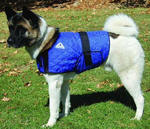 HyperKewl Cooling Dog Coat - LRG-BLUE