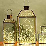 Copper Wire Light - Kohree Starry String Light - Party String Light - Starry Night Light - Décor Rope Light For Seasonal Decorative Christmas Holiday - Wedding - Party With Power Adapter (33Ft 100 LEDs)
