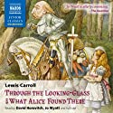 Through the Looking Glass and What Alice Found There Audiobook by Lewis Carroll Narrated by David Horovitch