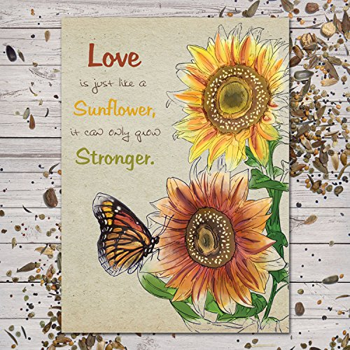 Set of 25 Colorful Sunflower Wedding Favors / Seed Packets (Autumn Beauty Mixture / Helianthus annuus)