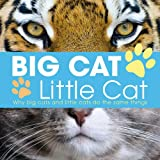 Lisa Regan Big Cat, Little Cat (London Zoo Edition)