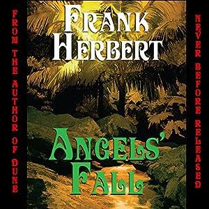 Angels' Fall Audiobook
