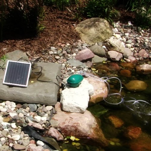 Air Stones For Ponds : Sunnydaze pond air pump solar oxygenator with two