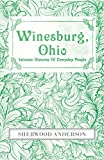 Winesburg, Ohio : Intimate Histories Of Everyday People