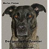 """Der gestreifte Spaniervon """"Marion Pletzer"""""""