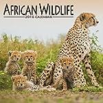 African Wildlife Calendar - 2016 Wall...