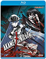 Akame Ga Kill 2 [Blu-ray] from Section 23