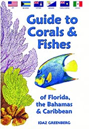 Guide To Corals And Fishes