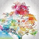 Rainbow Tree (初回生産分限定 デジパック仕様)