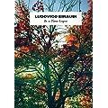 Ludovico Einaudi: In a Time Lapse -- alle Songs des aktuellen Albums arrangiert f�r Klavier [Musiknoten]