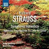 Symphonica Domestica Strauss