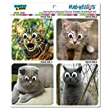 Graphics and More Funny Cats Googly Eye Pictures Kitten Mag-Neato's Automotive Car Refrigerator Locker Vinyl Magnet Set